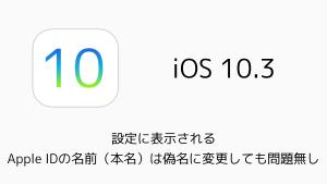 【iPhone】設定に表示されるApple IDの名前(本名)は偽名に変更しても問題無し