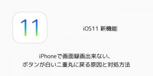 【iOS11】iPhoneで画面録画出来ない、ボタンが白い二重丸に戻る原因と対処方法