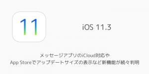 【iOS11.2.5】13件のセキュリティ上の欠陥(脆弱性)が修正 受信するとフリーズするchaiOSなど