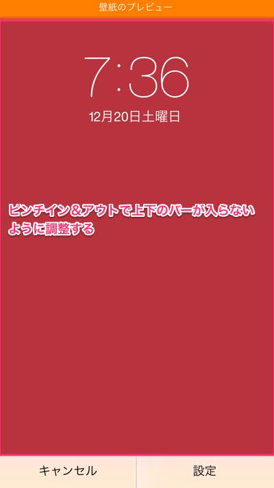th_IMG_4981 (1)
