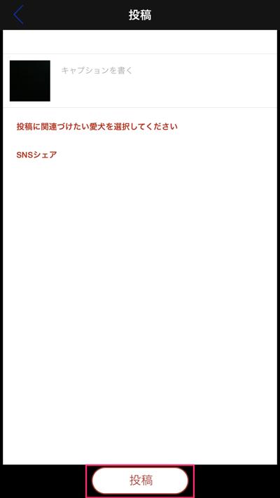 th_IMG_5025