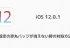【iPhone】iOS 12.1 beta 3などがリリース 正式版は今月末にもリリースされる可能性も?