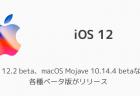 【iPhone】iOS12.1.3でApp Storeに「定期利用の管理」が追加