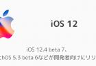 iOS 12.4 beta 7、watchOS 5.3 beta 6などが開発者向けにリリース