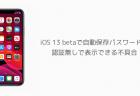 iOS 13 betaで自動保存パスワードを 認証無しで表示できる不具合