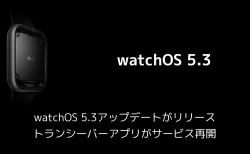 watchOS 5.3アップデートがリリース トランシーバーアプリがサービス再開