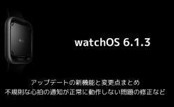 【watchOS 6.1.3】アップデートの新機能と変更点まとめ 不規則な心拍の通知が正常に動作しない問題の修正など