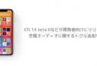 【iPhone】iOS 14 beta 6などが開発者向けにリリース、空間オーディオに関するトグル追加など